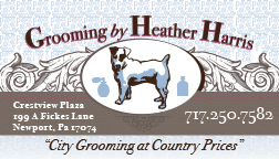 A business card made for a friends dog grooming boutique.